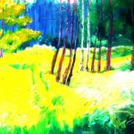 """Medium Yellow Meadow"""