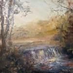 Hidden Falls by Domine Vescera Ragosta