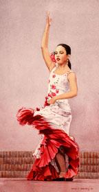 """""""Flamenco Recital V"""""""