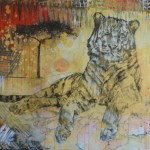 Africa - Tiger